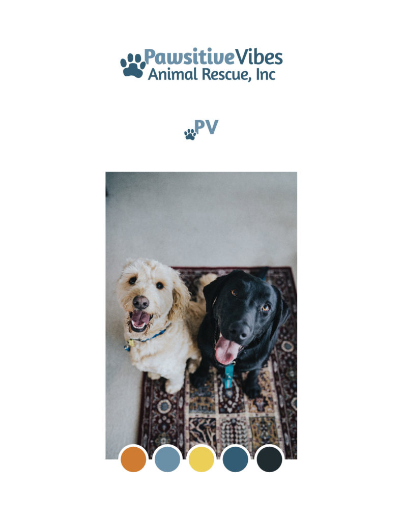 Logo, sub mark, photo and colors defining Pawsitive Vibes Animal Rescue brand