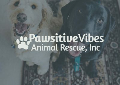 Pawsitive Vibes Animal Rescue, Inc