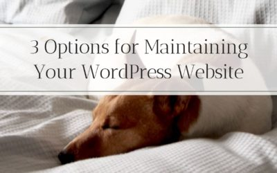 3 Options for WordPress Maintenance